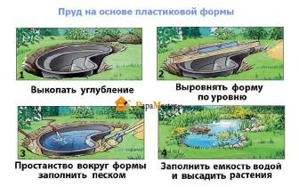 этапы создания пруда своими руками