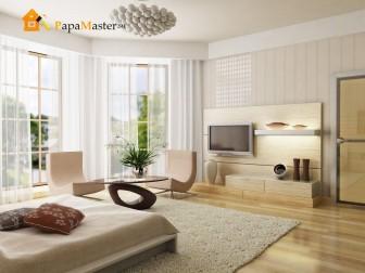 Гостиная спальня дизайн фото - модерн
