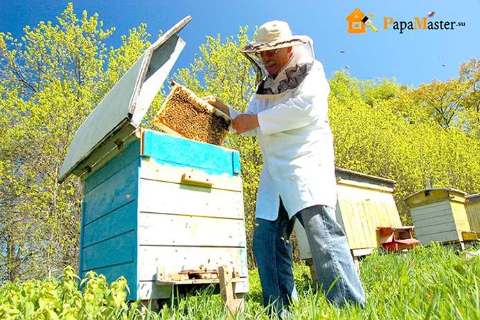 Домики для диких пчел своими руками 47