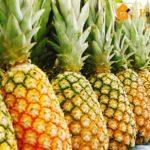otlomat ananasnuyu rozetku, foto 1