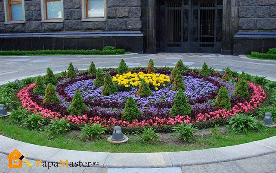 Красивые клумбы из многолетних цветов фото