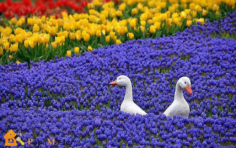 Фото композиций из цветов в корзине 58